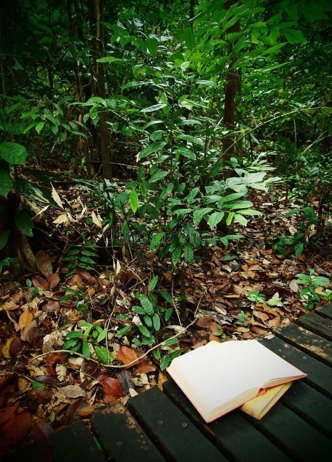 Libros en rastro de la selva tropical fotografía de archivo
