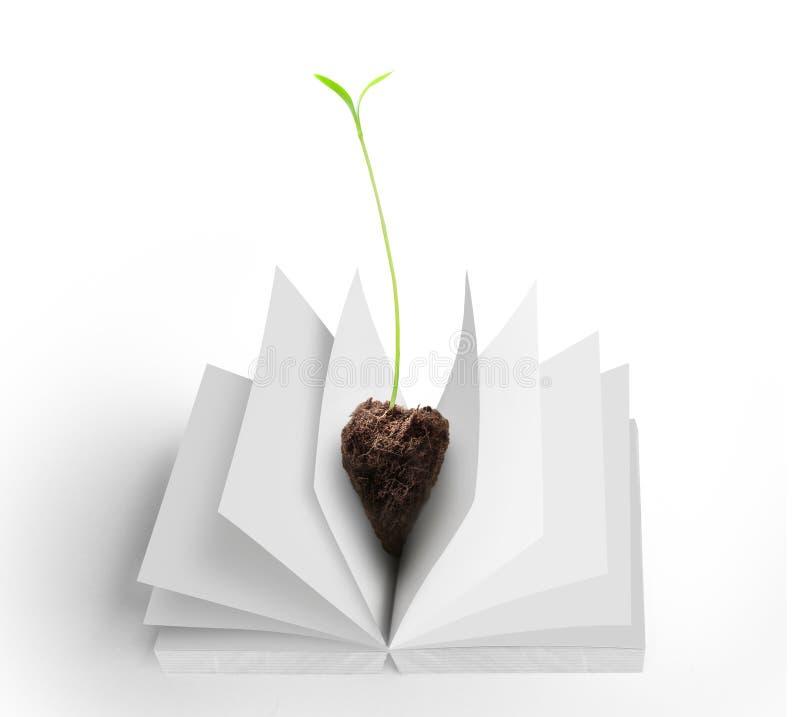 Libros y árbol foto de archivo libre de regalías