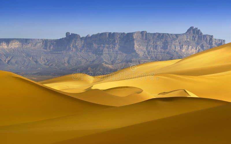 Libyan沙漠 库存图片