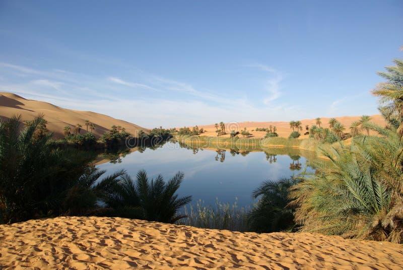 libyan озера пустыни стоковые фотографии rf