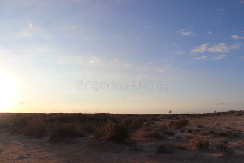libyerer arkivbilder