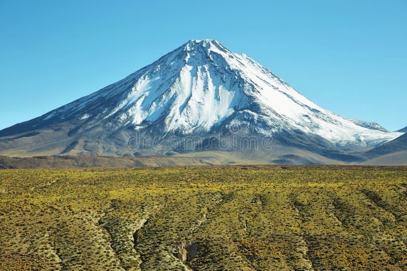 Licancabur火山 免版税图库摄影