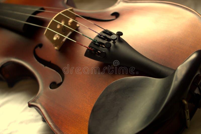 Lichaam van een viool stock foto