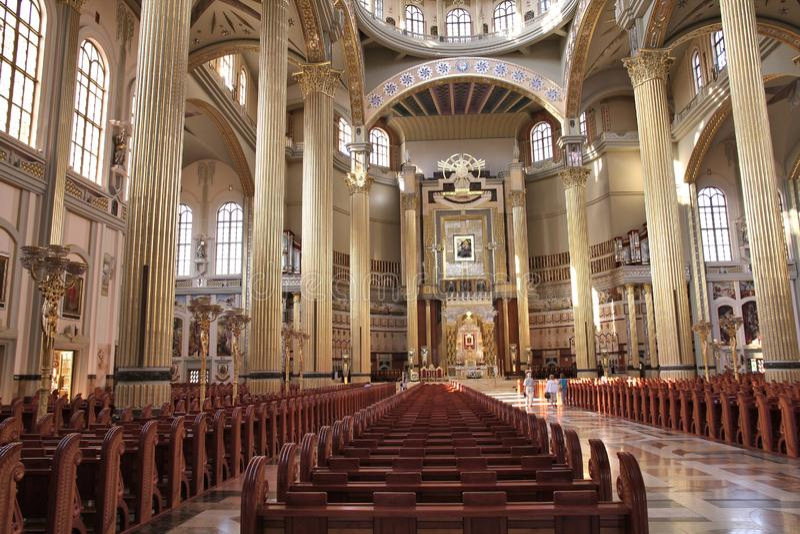 Lichen Basilica images libres de droits