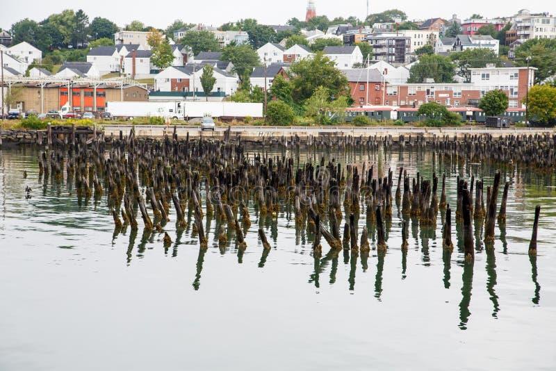 Lichen Covered Posts en el puerto de Portland fotografía de archivo libre de regalías