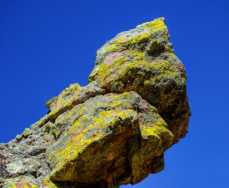 Lichen Point fotografia de stock