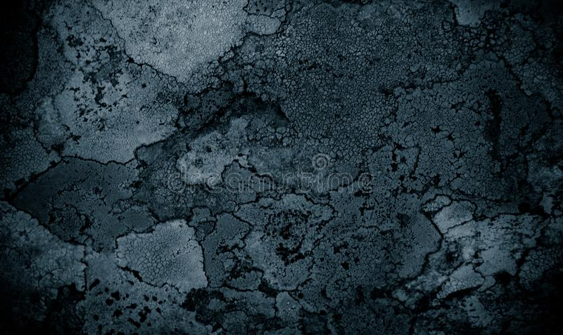 Lichen on rock abstract background/ Abstract backdrop of lichen and stone / Rough texture background. / Black textured background royalty free stock photography