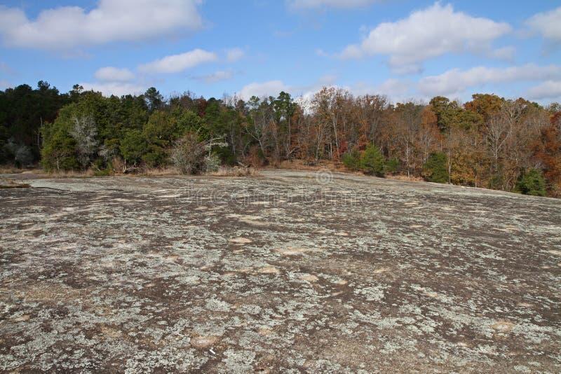 Lichens couvrant un affleurement rocheux de granit images libres de droits