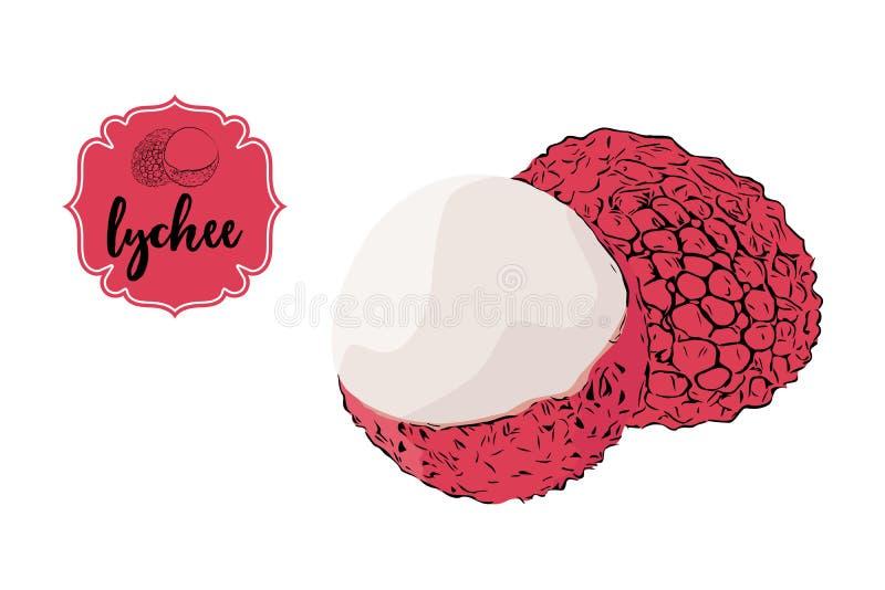 Lichi exhausto de la historieta aislado en blanco Insignia retra rosada de la etiqueta de la tienda con el texto stock de ilustración