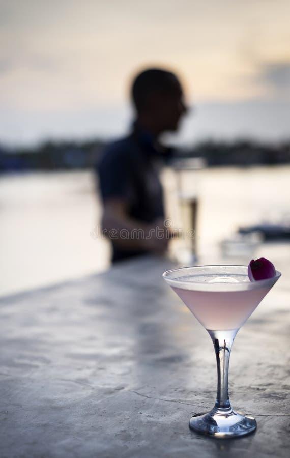 Lichi y cóctel exótico infundido jazmín de martini de vodka en la barra asiática de la puesta del sol foto de archivo