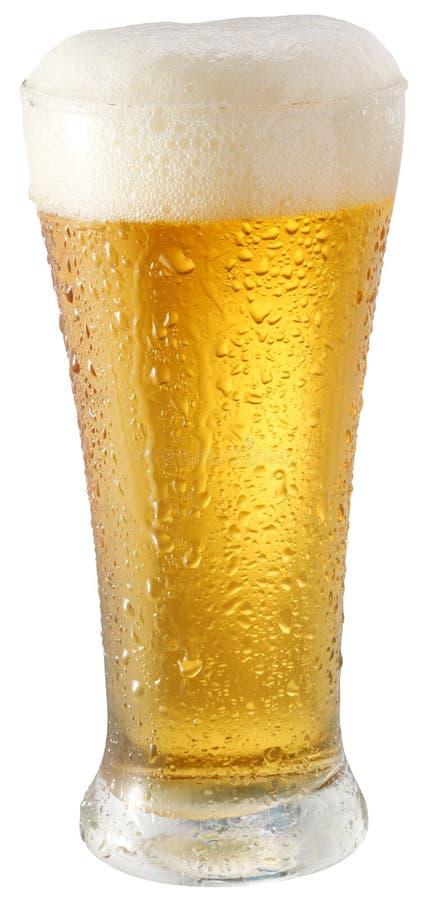 Licht bier in glas royalty-vrije stock foto