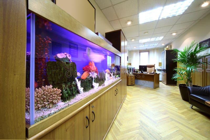 aquarium licht cheap onderwater licht die stralen worden. Black Bedroom Furniture Sets. Home Design Ideas