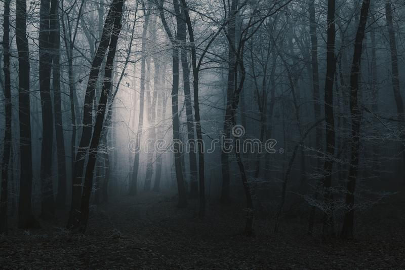 Licht in de afstand van de sleep door donkere griezelige mistig voor royalty-vrije stock foto's