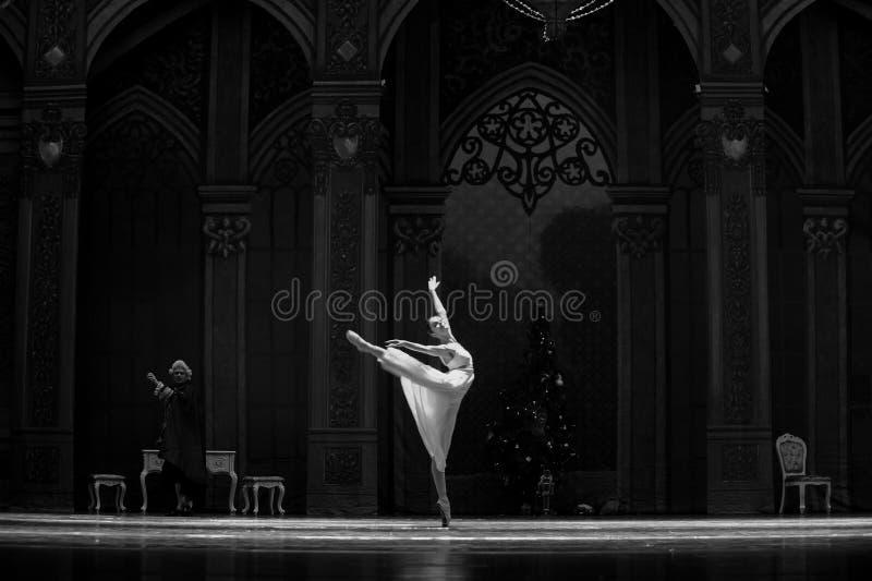 Licht en de schaduw-Balletnotekraker stock foto