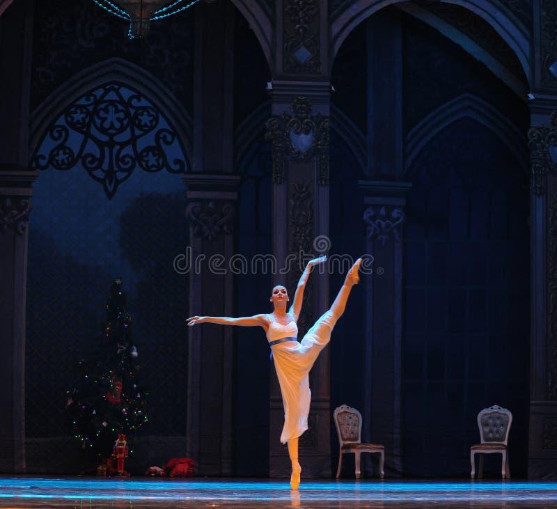 Licht en de schaduw-Balletnotekraker royalty-vrije stock foto