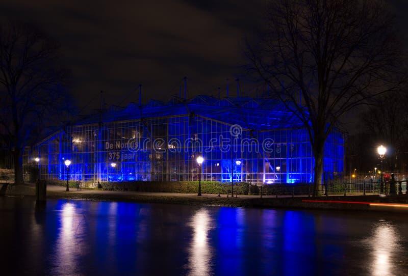 Licht festival in Amsterdam royalty-vrije stock foto's