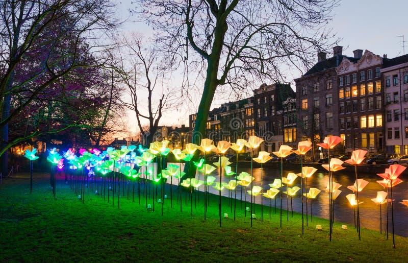 Licht festival in Amsterdam stock fotografie
