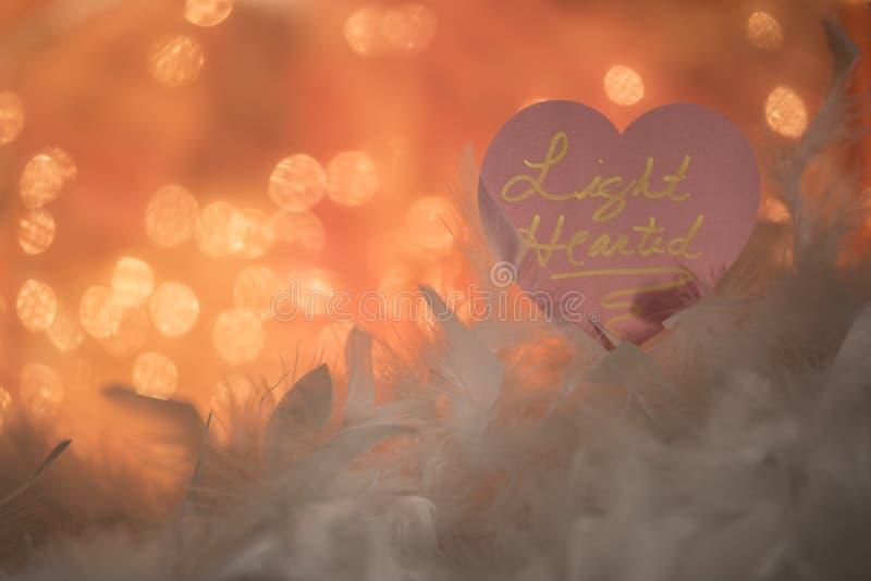 Licht hearted teken met veren stock fotografie