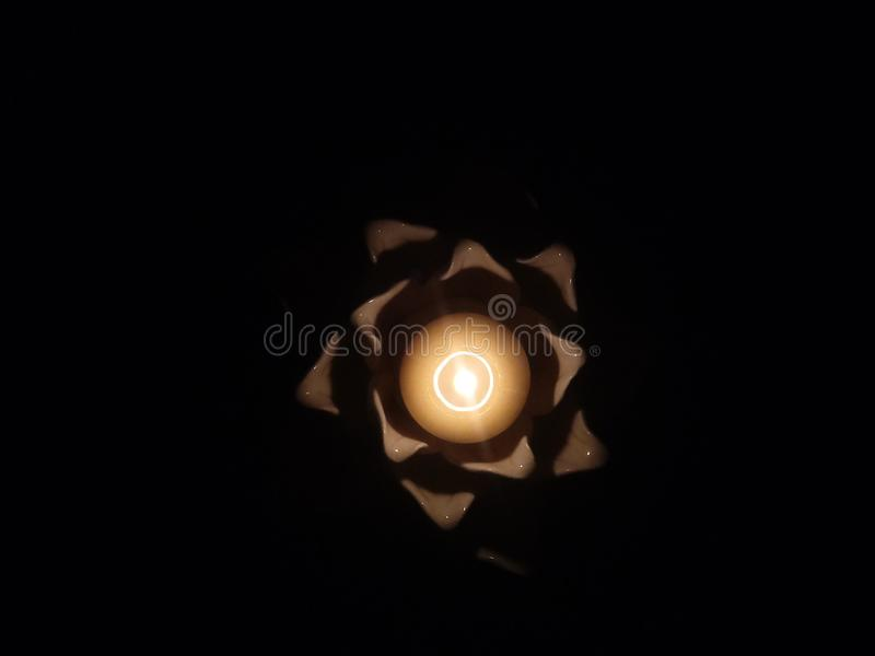Licht Lotuss stockfotos