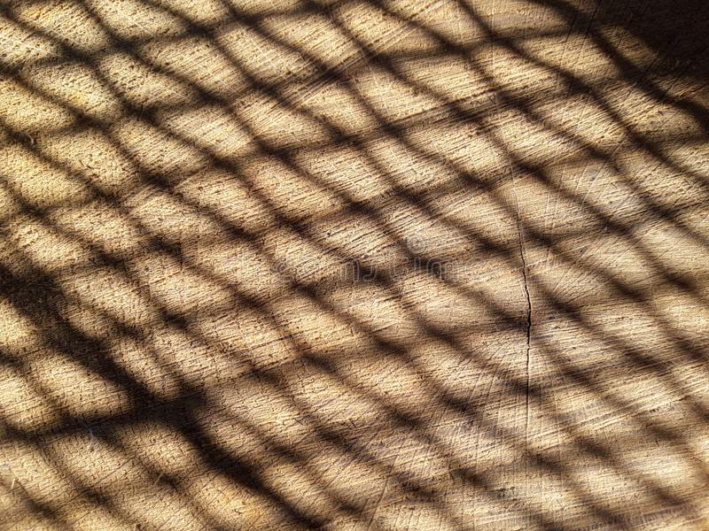 Licht netwerk stock foto