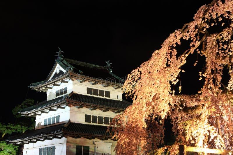 Licht omhoog van het kasteel en de kersenbloesems van Hirosaki stock fotografie