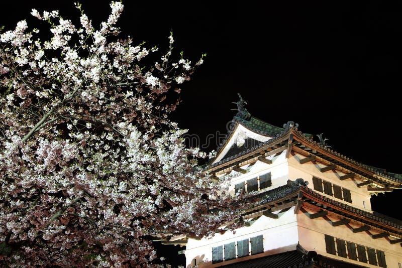 Licht omhoog van het kasteel en de kersenbloesems van Hirosaki stock afbeeldingen