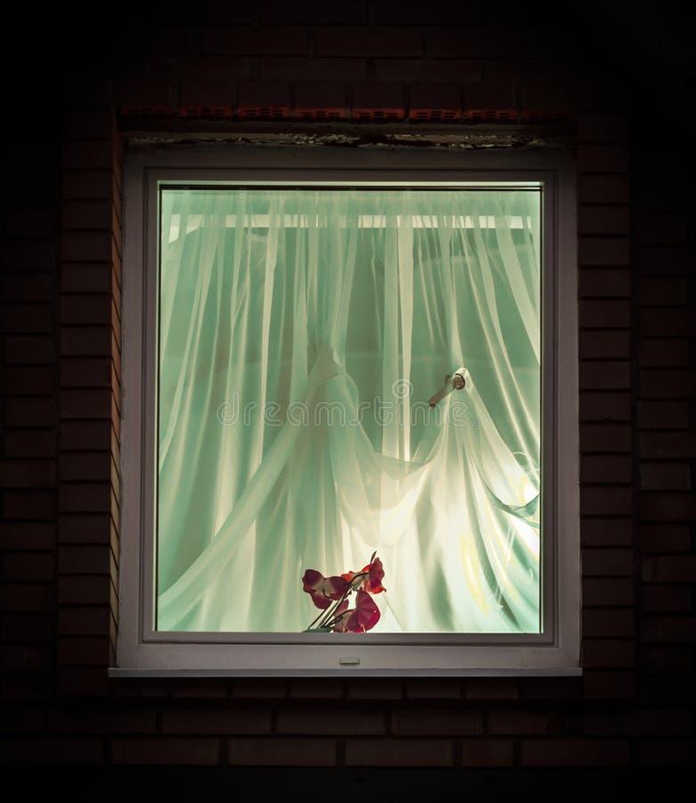 Licht van het venster royalty-vrije stock fotografie