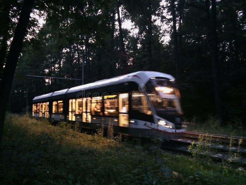 Licht van tram in park stock fotografie