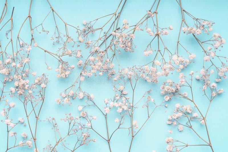 Lichtblauwe bloemenachtergrond met witte Gypsophila-bloemen De babys-adem bloeit patroon op pastelkleurblauw royalty-vrije stock foto's