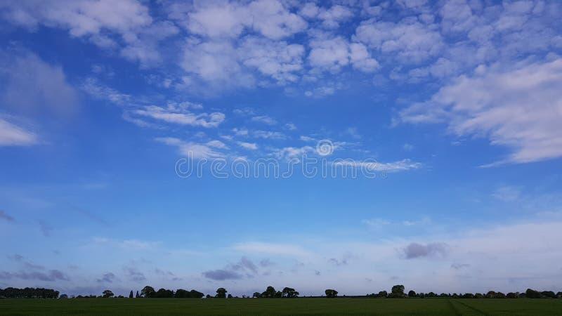 Lichtblauwe de zomerhemel over gebied royalty-vrije stock afbeelding