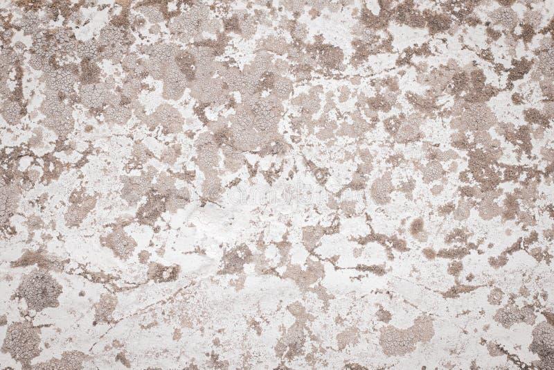 Lichtbruine en witte concrete muur Sjofele vuile ruwe oppervlakte Oude gipspleister Cementtextuur, abstracte grungeachtergrond Mo stock foto