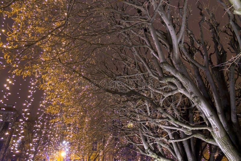 Lichten op een straat bij Komst stock fotografie