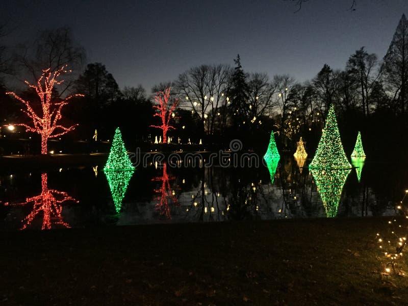 Lichten op het meer stock afbeeldingen