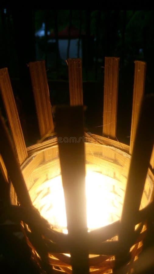 Lichtgevend bamboe royalty-vrije stock afbeeldingen