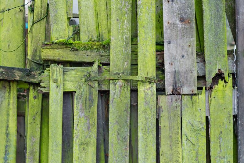 Lichtgroene houten plankenwijnoogst of grunge textuur stock afbeeldingen