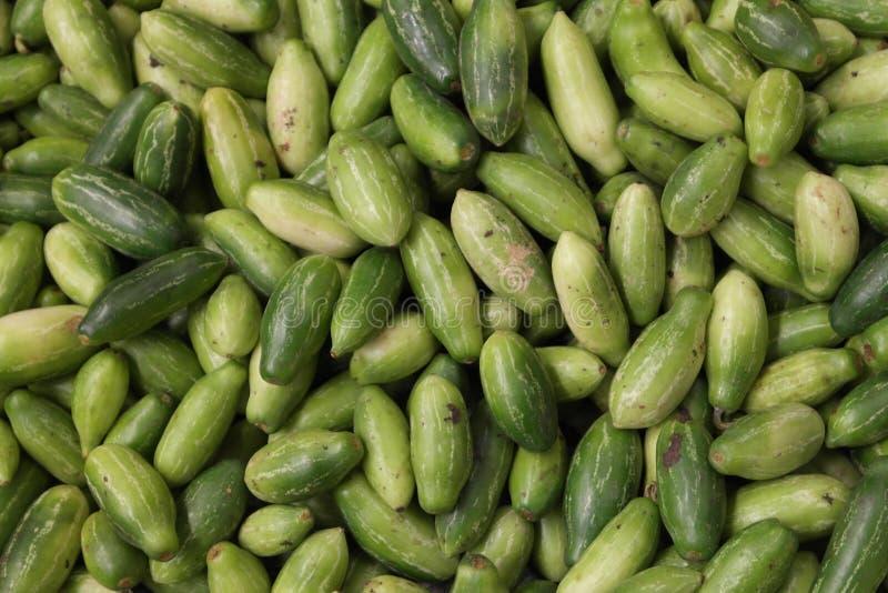 Lichtgroene komkommers stock fotografie