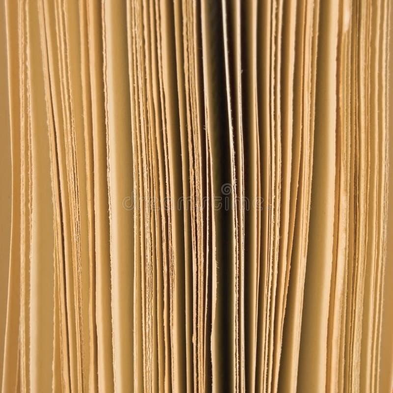 Lichtjes open van boekpagina's sepia als achtergrond, het grote verticale macroschot van de close-upstudio royalty-vrije stock foto