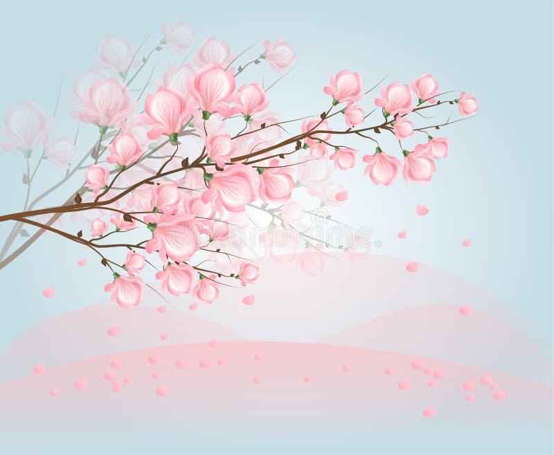 Lichtrose magnoliabloesem op hemel vector illustratie