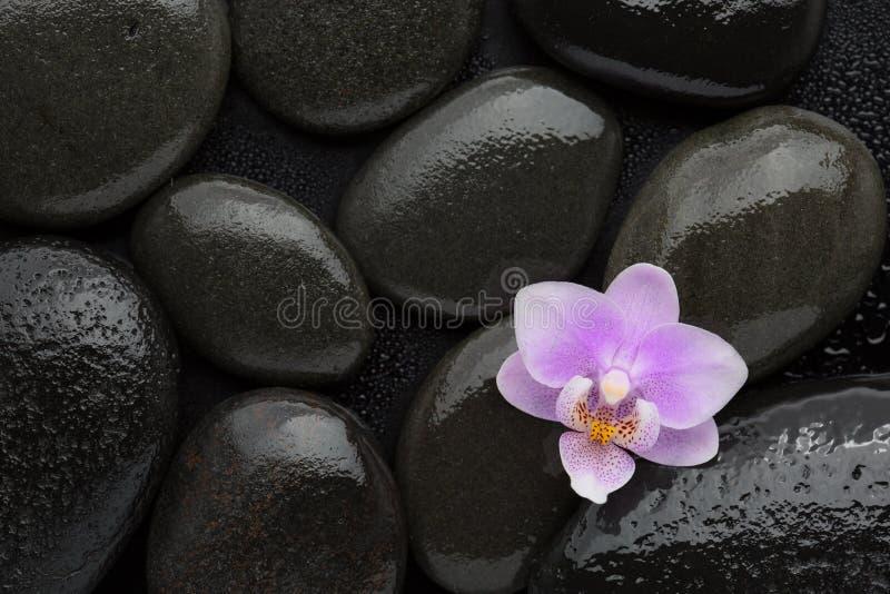 lichtrose orchidee die op natte zwarte stenen liggen Hierboven bekeken van Zeep, handdoek en bloemensneeuwklokjes stock foto