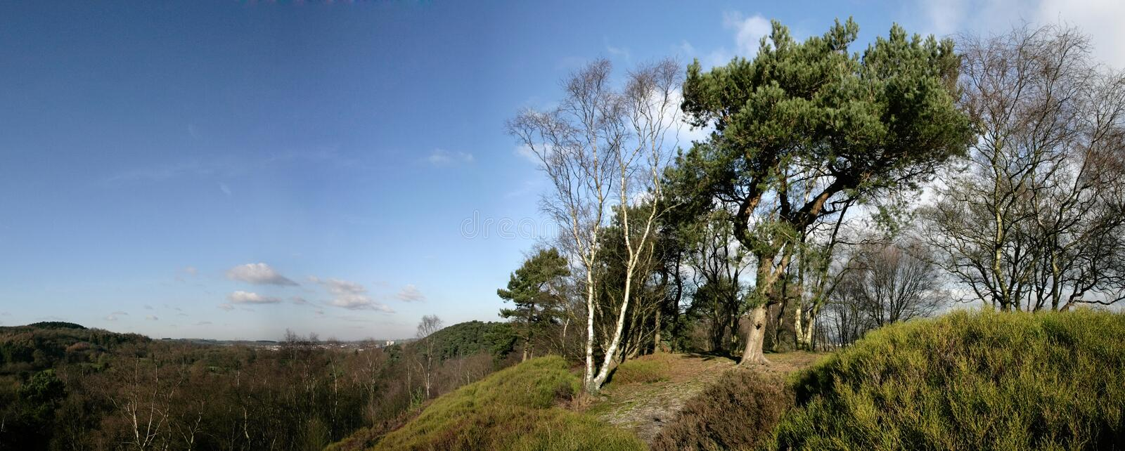 Download Lickey hills stock photo. Image of decay, england, element - 3305164
