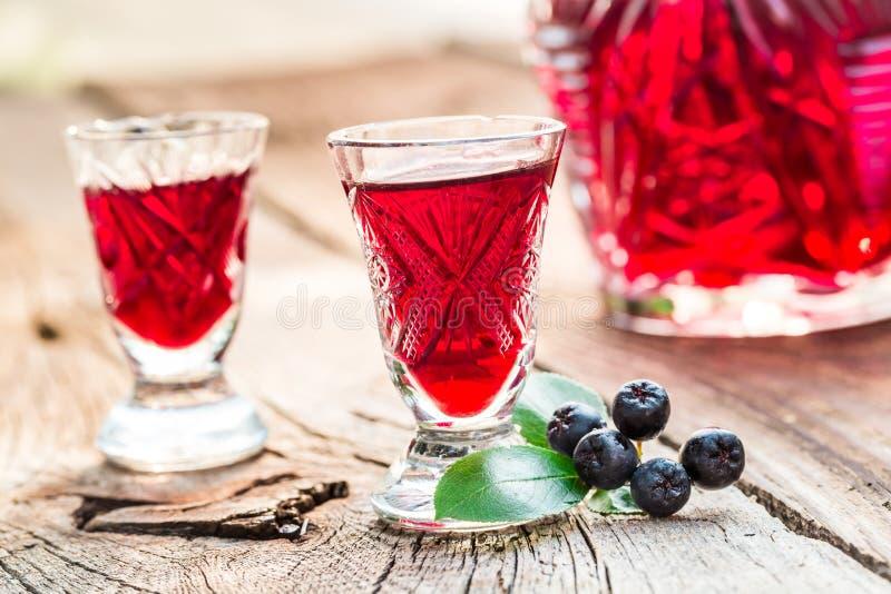 Licor fresco hecho de chokeberries y de alcohol imagen de archivo