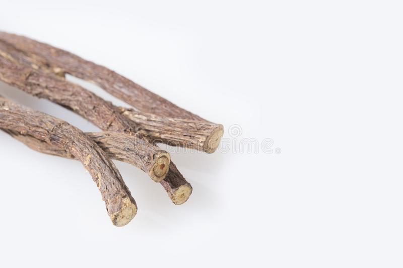 Licorice root - Glycyrrhiza glabra stock images