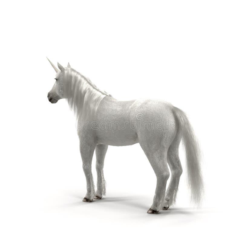 Licorne blanche image stock
