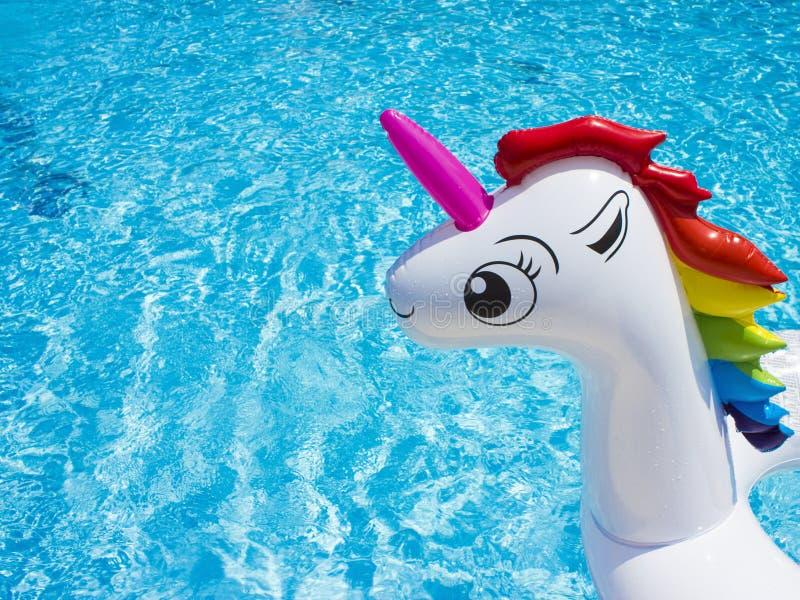 Licorne blanche de jouet gonflable dans la piscine images libres de droits