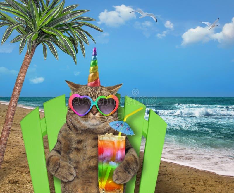 Licorne de chat se reposant sur la plage image stock