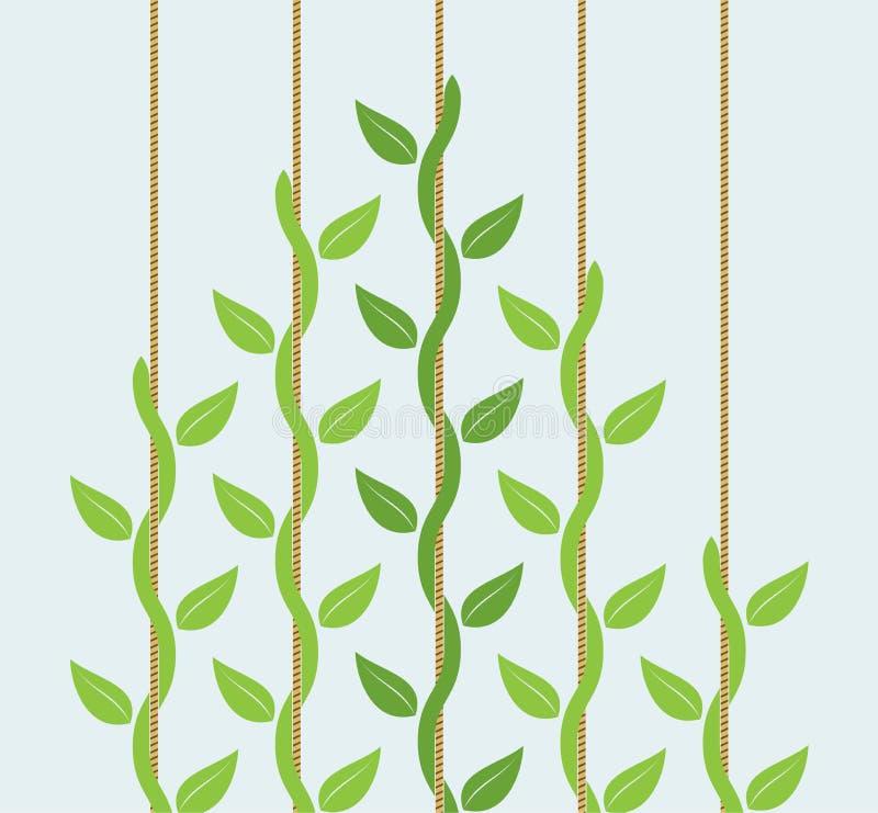 Liderança ou conceito da competição com plantas de escalada ilustração do vetor