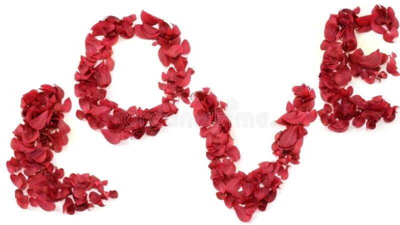 Download Liebe stockbild. Bild von liebe, text, blume, flitterwochen - 12202581