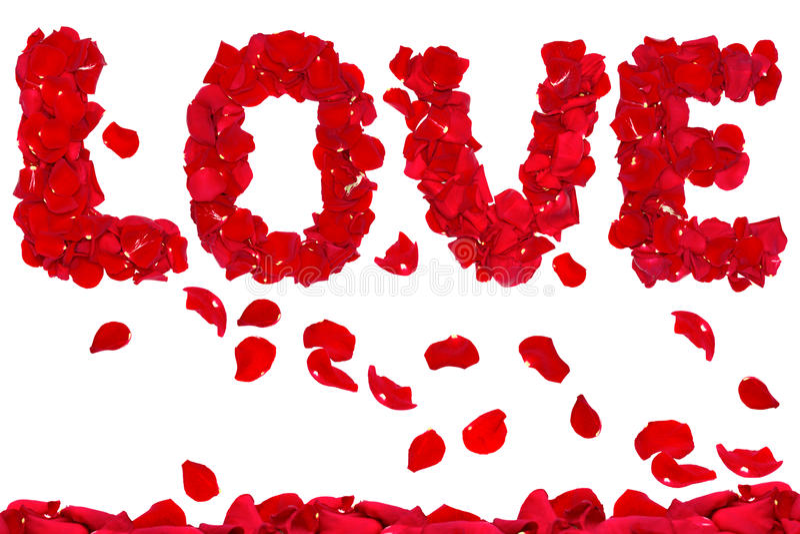 Liebe der rosafarbenen Blumenblätter stockbilder