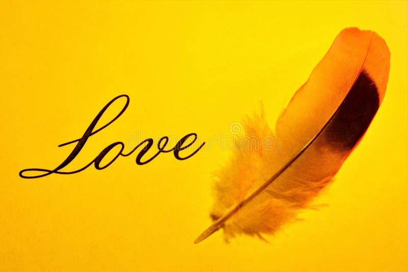 Liebe ist ein Gefühl der Sympathie, Zuneigung und Sehnsucht nach einer Person, eine philosophische Kategorie des intimen selektiv stockfotografie