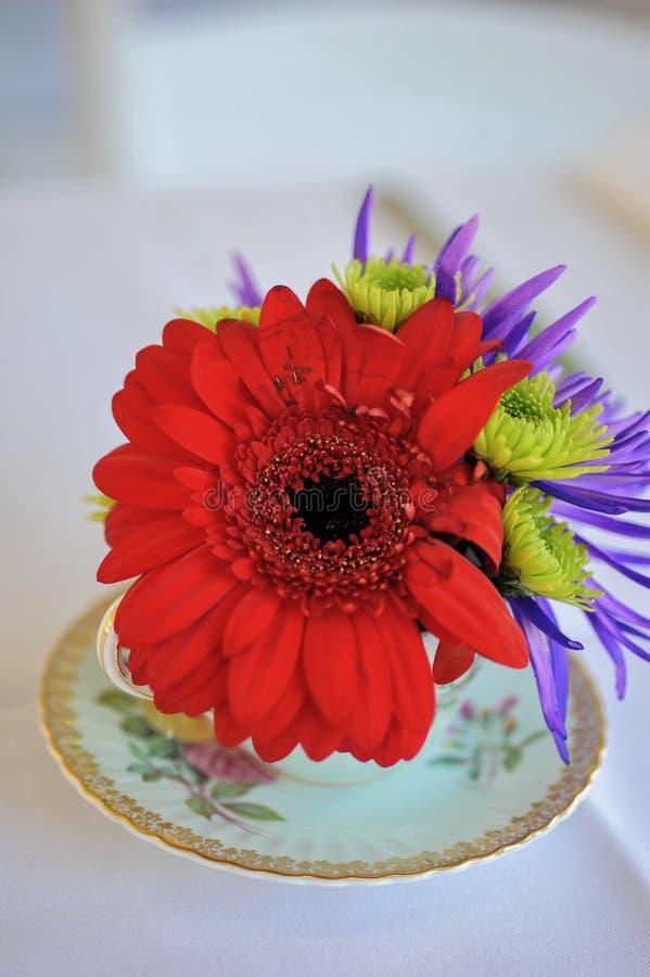 Liebe Rote Blume in einer Teetasse stockbilder